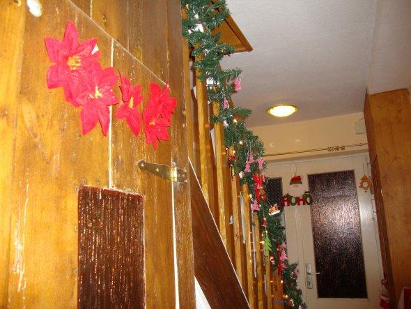 noch nicht ganz perfekt, aber alles abgeschliffen und lakiert, die Tür zum Gästeklo unter der Treppe ist fertig...