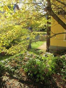 Lage und Garten(t)raum