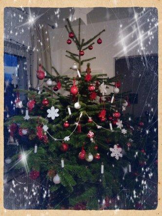 Unser Weihnachtsbaum. Die Kerzen werden erst Heiligabend angemacht.