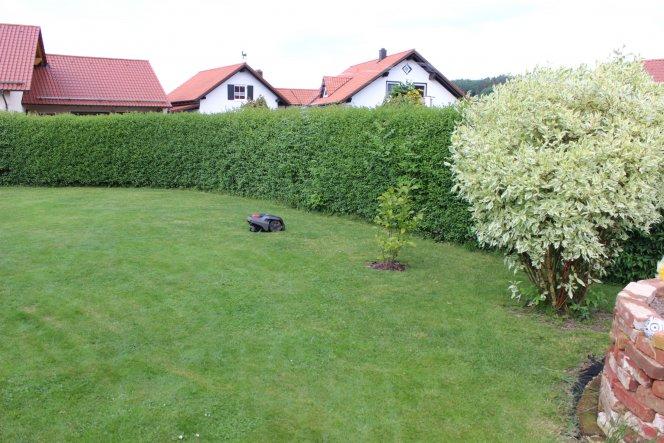 Garten 'Rasenmähroboter der Traum meines Freund'