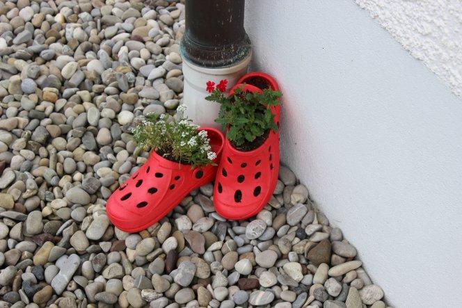 Garten 'Garten Pflanzen & Co'