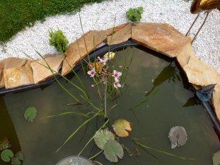 Garten - zweites Wohnzimmer