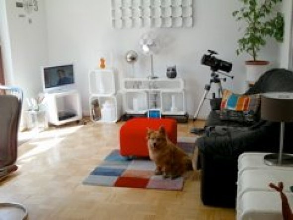 Unser Wohnzimmer---