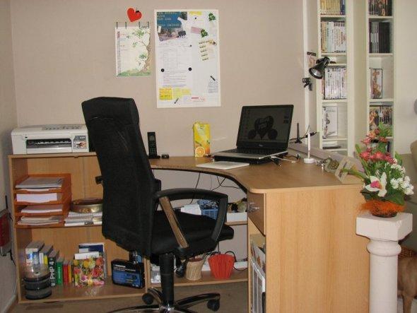 Tür im Rücken und Blick auf die Wand mag ich überhaupt nicht, daher habe ich den Schreibtisch so platziert, das ich direkt in den Raum, Richtung Fenst