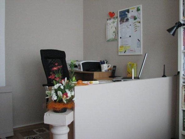 Da die Rückseite des Schreibtisches offen war, mit Blick auf Kabelsalat und Co., habe ich eine MDF-Platte angeschraubt und diese in der gleichen Farbe