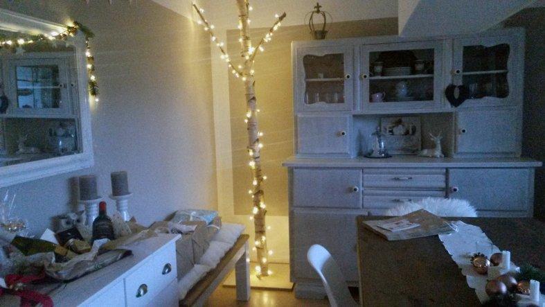 Die Birke zur Weihnachtszeit