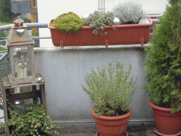 Terrasse / Balkon 'Patio'