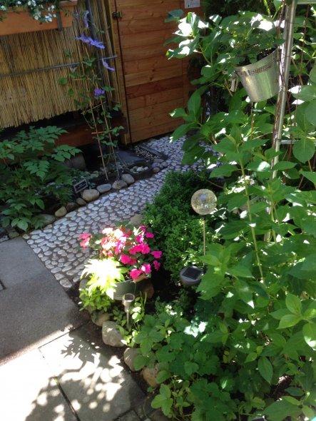 garten 39 der minigarten 39 schl sselblume zimmerschau. Black Bedroom Furniture Sets. Home Design Ideas