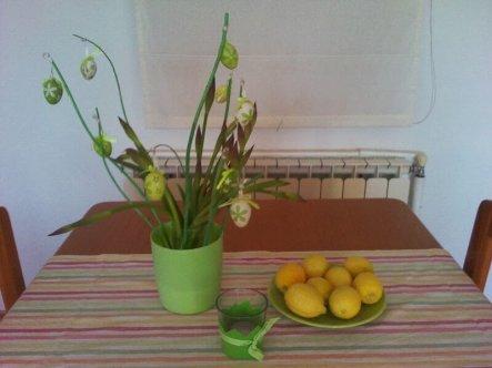 Die Zitronen hab ich von einer lieben Nachbarin geschenkt bekommen und ich finde sie passen farblich gut zur Deko, natürlich nur solange bis sie verbr