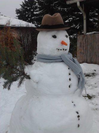 Garten 'Garten im Winter'