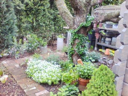 Garten 39 unser landhausgarten 39 mein domizil zimmerschau - Rankpflanzen zimmer ...