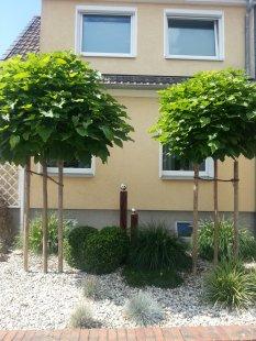 Vorgarten/Garten