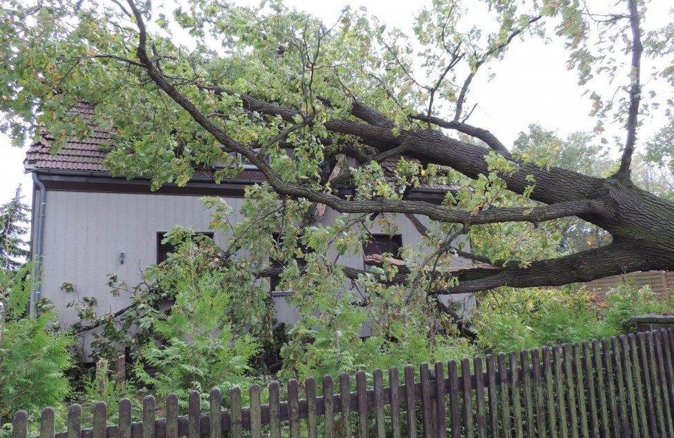 Sturm zerstört unser Haus / Fassade Aussenansicht 2017 von Rosarotewelt