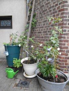 'Gartenküche Gartenbett Vo...' von Freyjairis