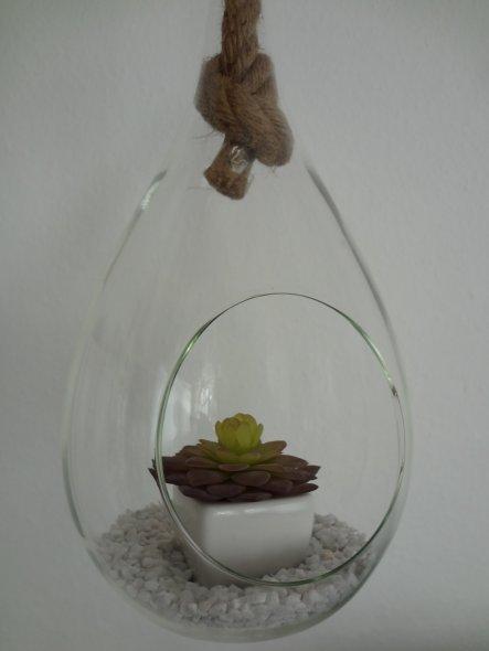 passt gut zum selbstgebasteltem Hängeboard.  Ich mag: Die Kombination aus Glas, Holz und Pflanzen :-)