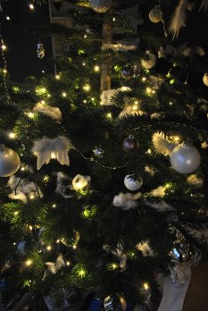 'merry xmas 2015 '