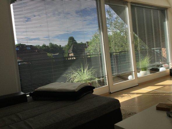 Ein Blick von der Couch nach draußen :)   Die große Fensterfront lässt auch mit Rollos sehr viel Licht in die Wohnung.
