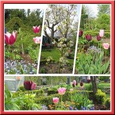 'der Garten ' von Majalein