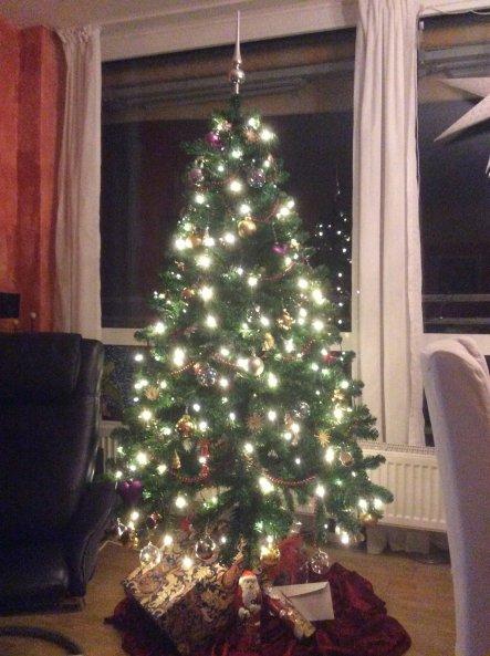 2009 investierten wir in diesen Baum. Dekorativ ist jedesjahr ein wenig anders.
