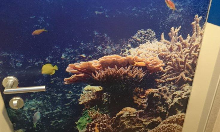 Die Klebefolie an der Tür ist genauso ausgemessen, dass das Korallenriff auf der Höhe der Bordüre endet.