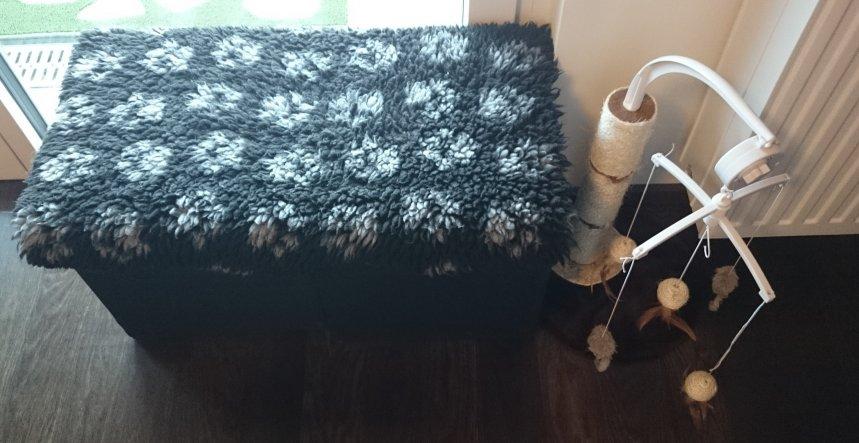 Und ihr eigenes kleines Sofa... das sind zwei Sitzwürfel vom Ikea, von wo sie gut rausschauen können.