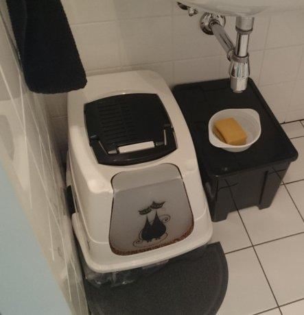 Das Katzenklo befindet sich auch in der Waschküche - die Katze können durch eine Katzenklappe  immer hinein und hinaus und so riecht man in der Wohnun