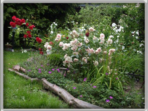 Garten 'Unser Sommergarten'