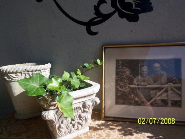 Terrasse / Balkon 'loggia'