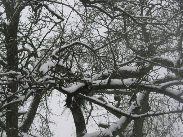 Hausfassade / Außenansichten 'unser zuhause im winter'