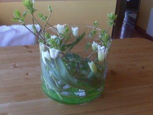Tipp & Trick 'Tulpen mal anders...'