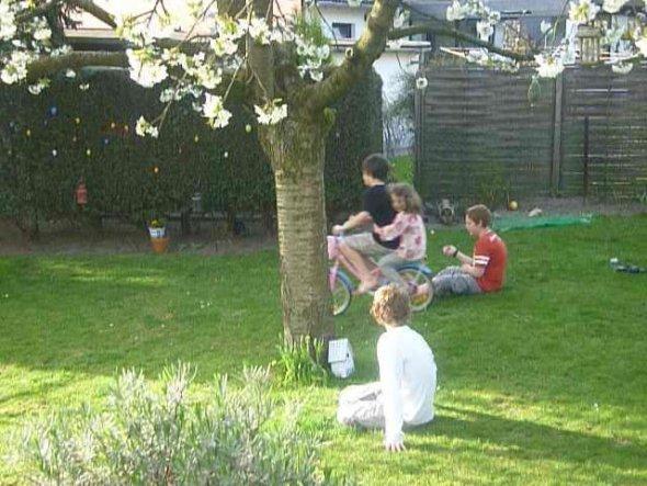 Garten 'Frühlingserwachen'