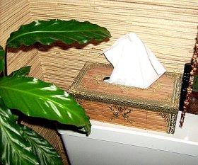 Tipp & Trick 'Kleenexbox aus Bambus'