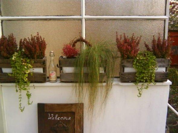 Terrasse / Balkon 'sommerzimmer im herbst'