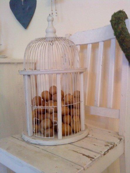 kartoffeln gehören doch in den käfig, oder???