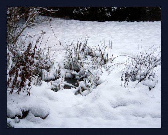 Hausfassade / Außenansichten 'Weiße Winterpracht'