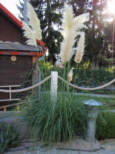 Garten 'Frohsinn'