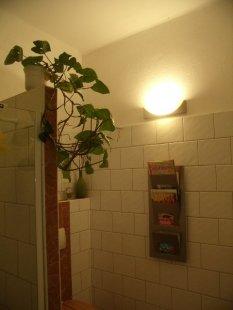 Gäste BAD/WC im EG