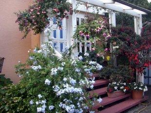 Hausfassade / Außenansichten 'Mein Zuhause ('Eingangsbereich)'