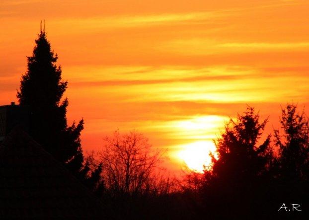 Ich wünsche euch allen ein wunderschönes Frühjahr....
