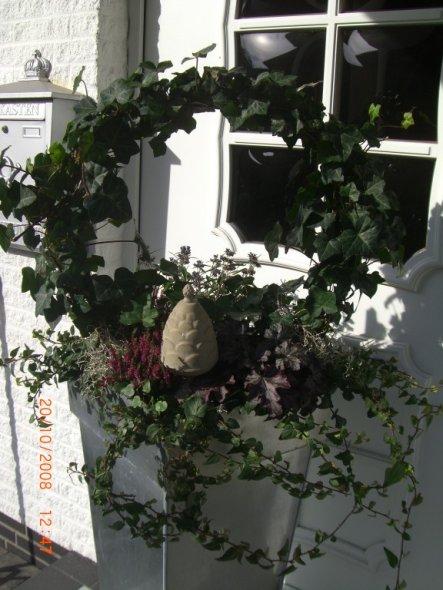 Hausfassade / Außenansichten 'Der Eingang'