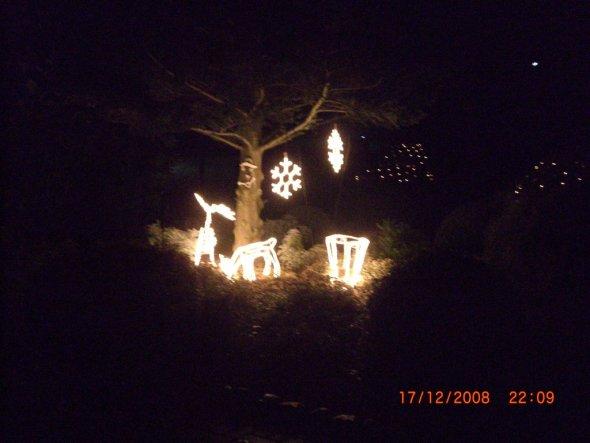 Garten 'Weihnachten im Garten'
