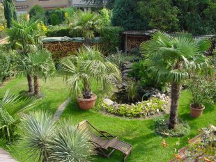 Exotisch 'mediterraner Garten'