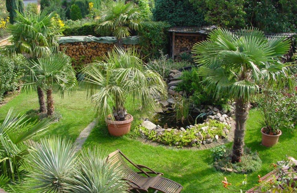 mediterraner Garten von meisterpreis