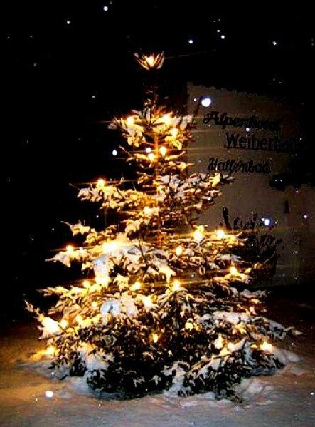 Weihnachtsdeko 'Weihnachtsbaum'
