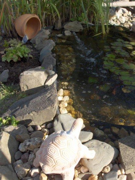 Garten 'Garten im Sommer'