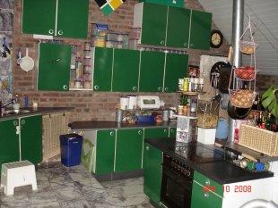 """""""grünes Gift"""" ...unsere Küche"""