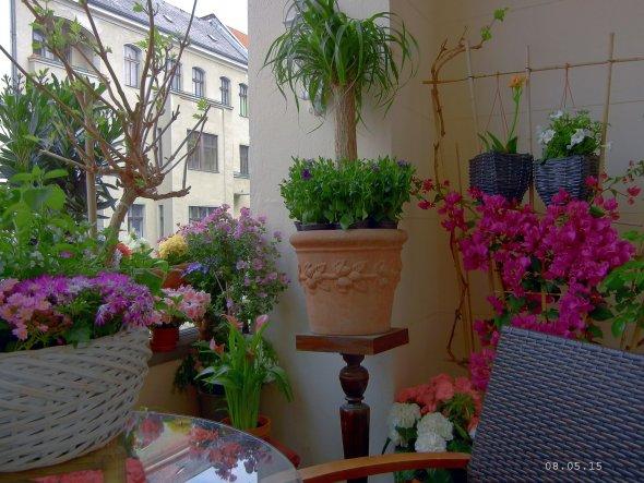Unterschied Balkon Terrasse Loggia : Terrasse Balkon u0026#39;Die Loggia u0026#39; Berliner