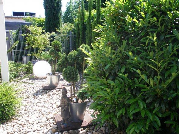 Terrasse / Balkon 'Terrasse/Garten'