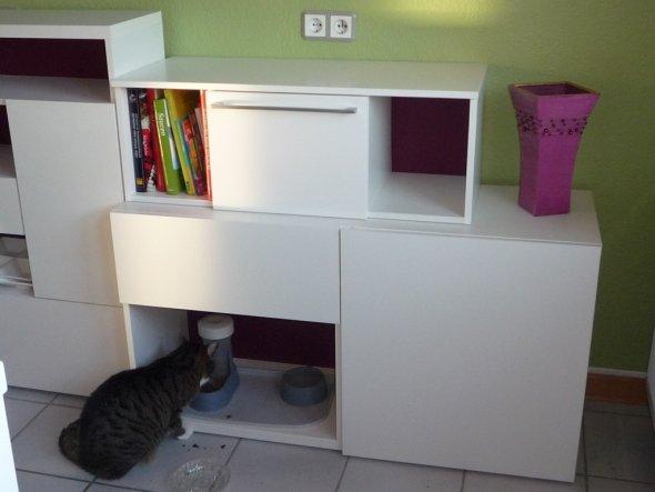 Katzenklo Schrank tipp melrose96 katzenklo verstecken zimmerschau