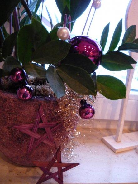Weihnachtsdeko 'Winterimpressionen'